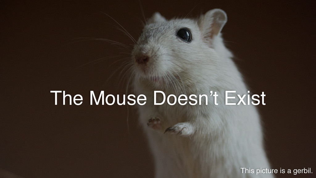 The Mouse Doesn't Exist This picture is a gerbi...