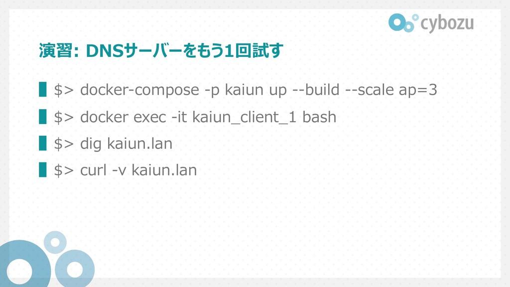 演習: DNSサーバーをもう1回試す ▌$> docker-compose -p kaiun ...