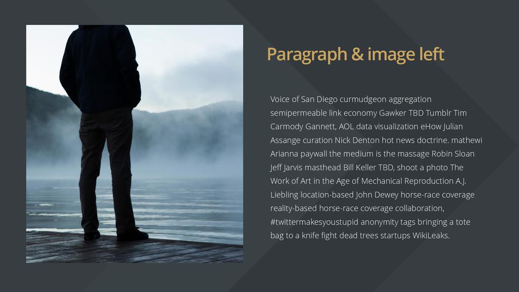Paragraph & image left Voice of San Diego curmu...