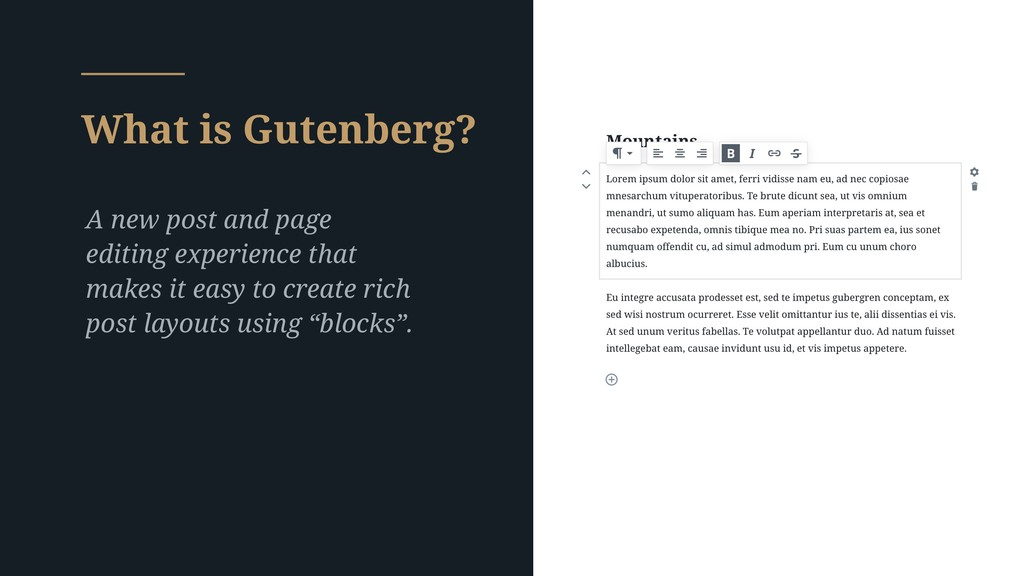 What is Gutenberg? A new post and page editing ...
