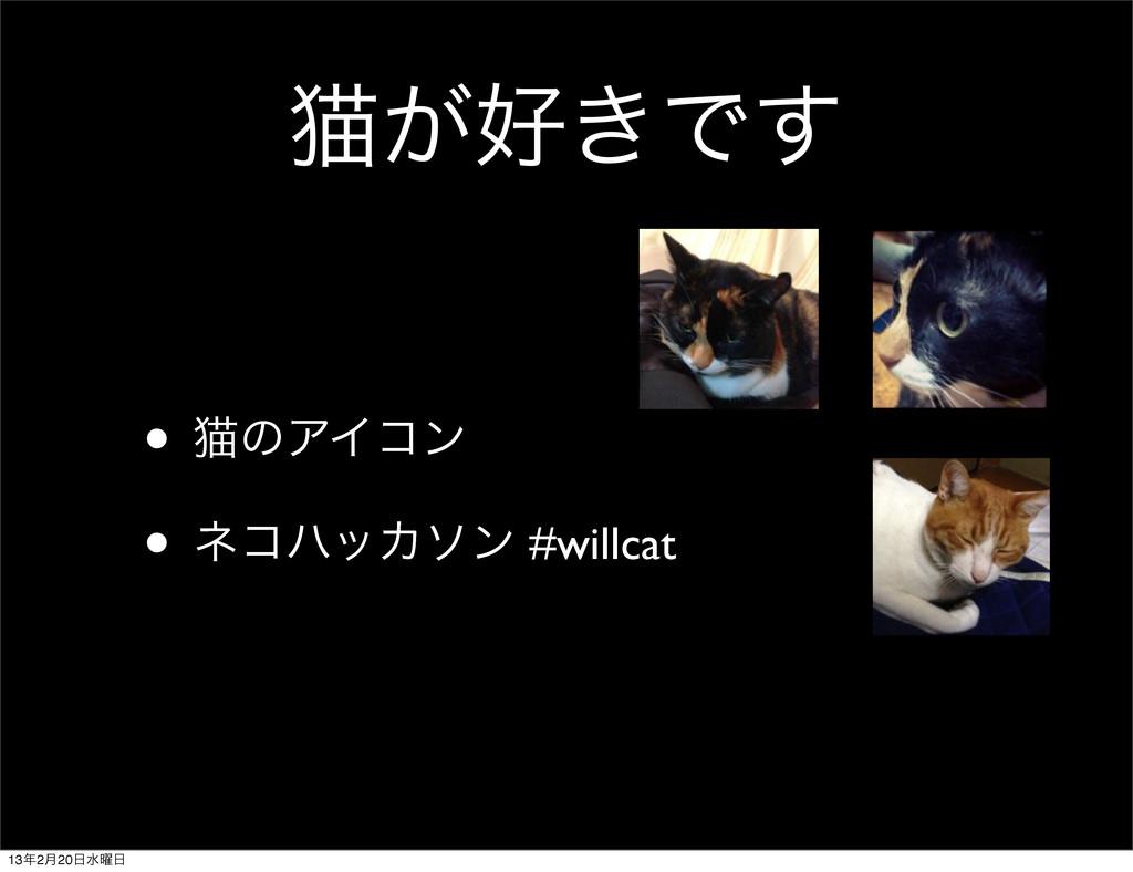 ೣ͕͖Ͱ͢ • ೣͷΞΠίϯ • ωίϋοΧιϯ #willcat 132݄20ਫ༵