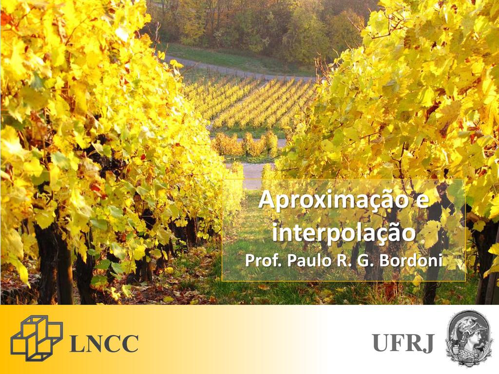 Aproximação e interpolação Prof. Paulo R. G. Bo...
