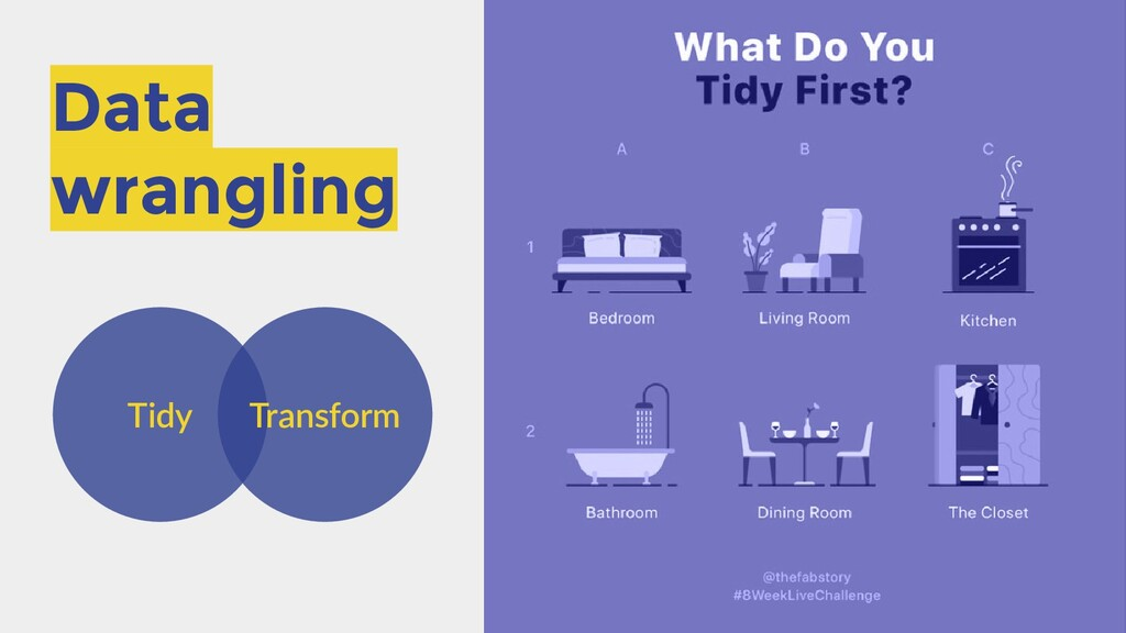 Data wrangling Tidy Transform