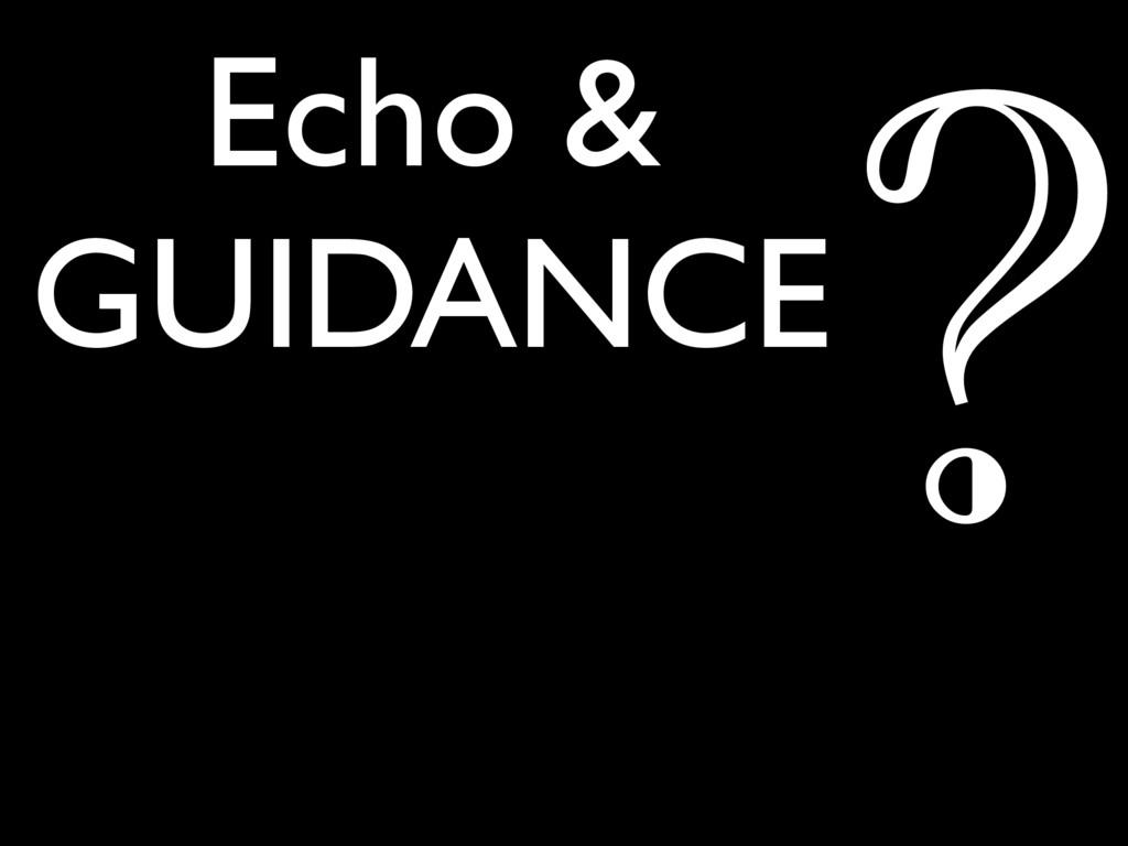 Echo & GUIDANCE ?