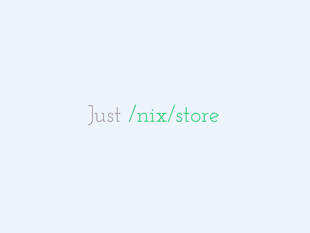 Just /nix/store