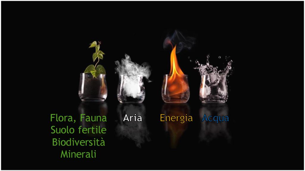 Flora, Fauna Suolo fertile Biodiversità Minerali