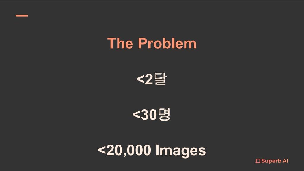 <2달 <30명 <20,000 Images The Problem