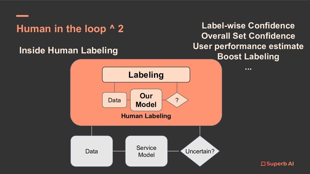 Inside Human Labeling Data Human Labeling Servi...