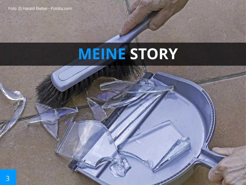 3 MEINE STORY Foto: © Harald Biebel - Fotolia.c...
