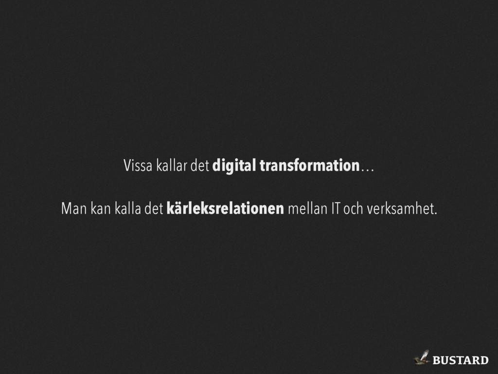 BUSTARD Vissa kallar det digital transformation...