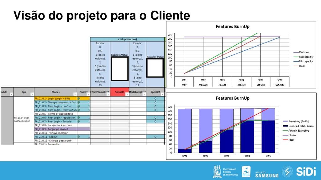 Visão do projeto para o Cliente