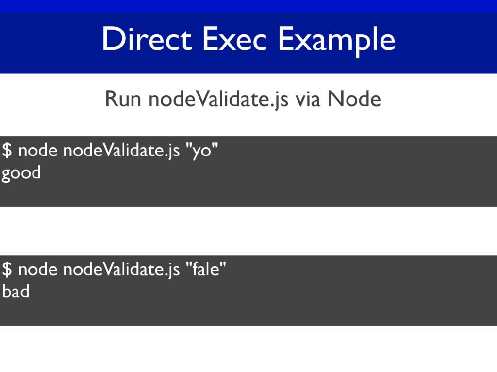 "Direct Exec Example $ node nodeValidate.js ""yo""..."