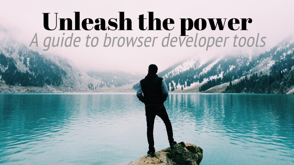 Unleash the power A guide to browser developer ...