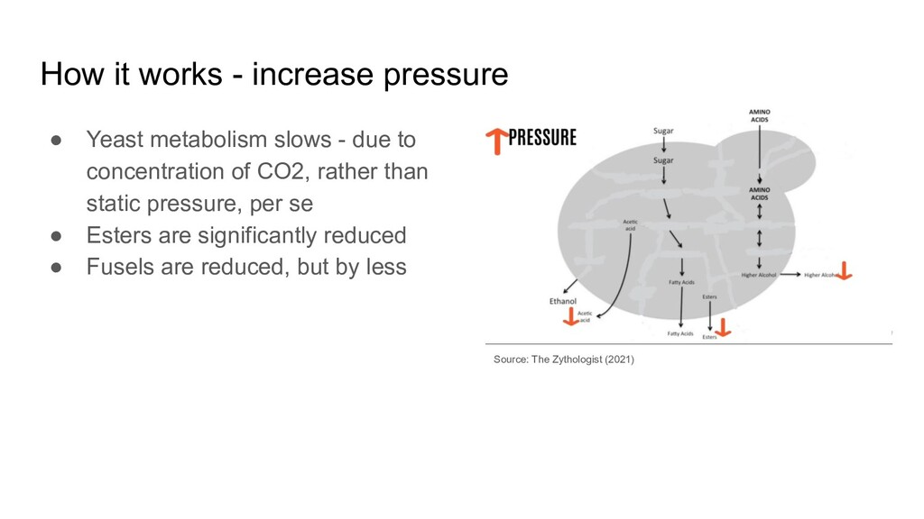 How it works - increase pressure ● Yeast metabo...