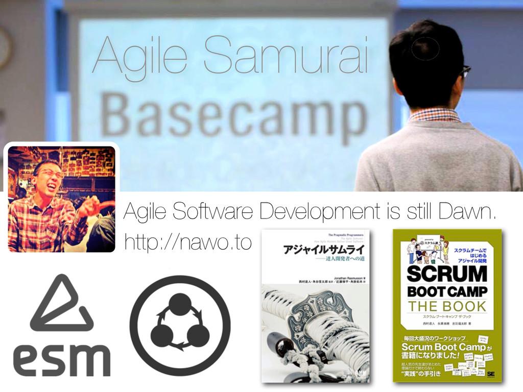 Agile Samurai Agile Software Development is sti...