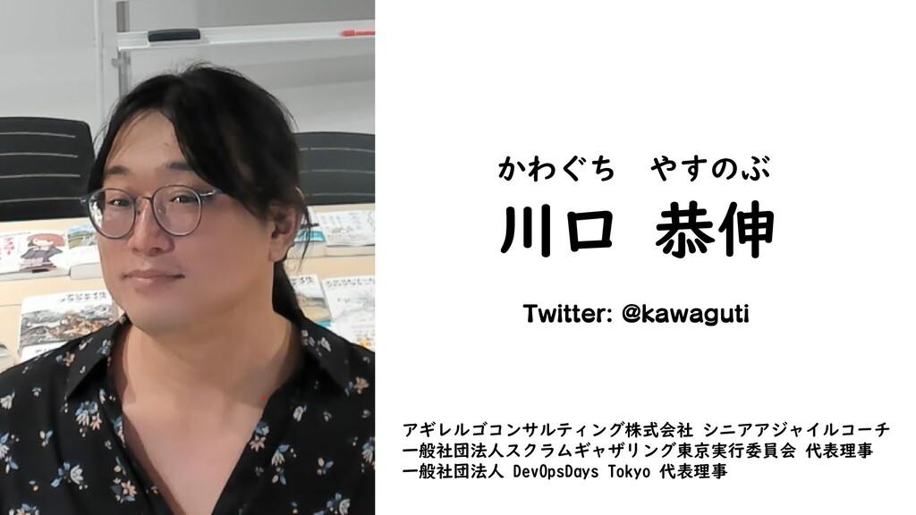 川口 恭伸 かわぐち やすのぶ Twitter: @kawaguti アギレルゴコンサルティン...