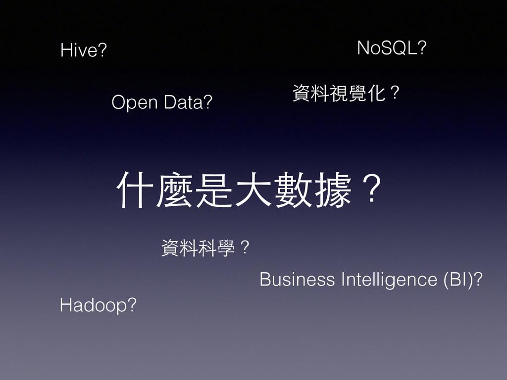 什麼是⼤大數據? 資料科學? 資料視覺化? Open Data? Business Intel...