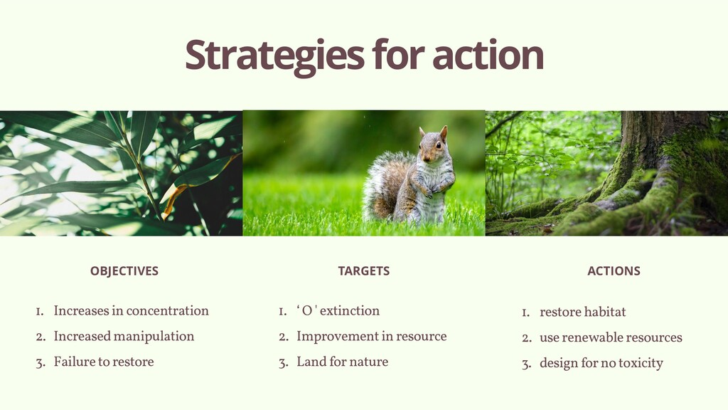 Strategies for action OBJECTIVES TARGETS ACTION...