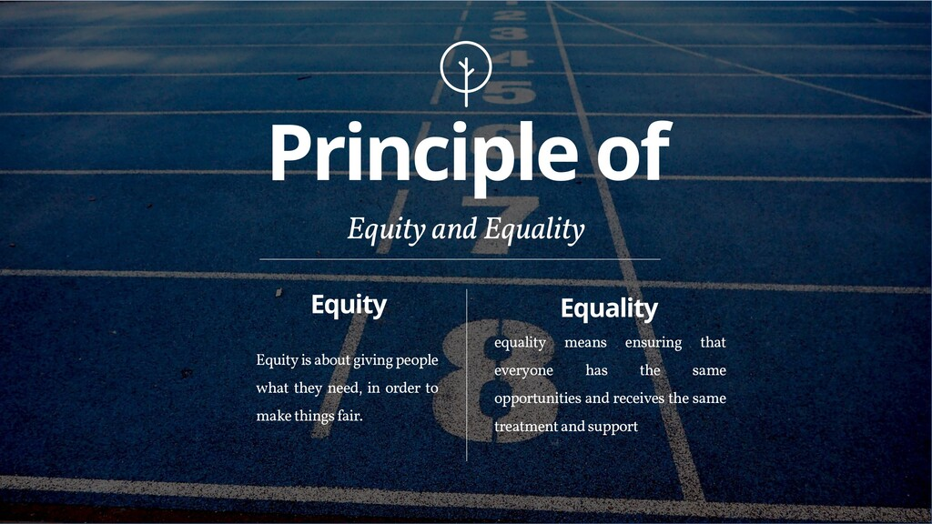 Principle of Equity and Equality Equity Equityi...