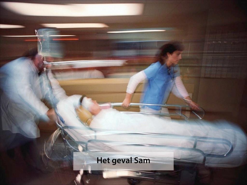 Het geval Sam