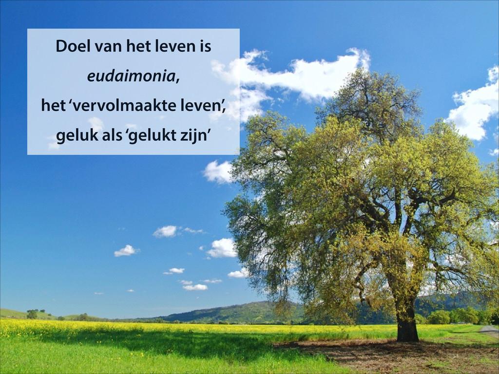 Doel van het leven is eudaimonia,  het 'vervol...