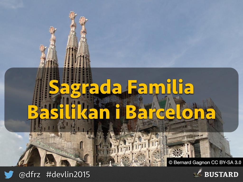 BUSTARD @dfrz #devlin2015 © Bernard Gagnon CC B...