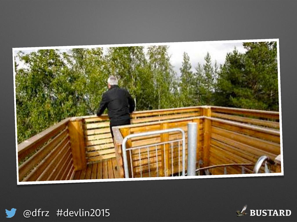 BUSTARD @dfrz #devlin2015