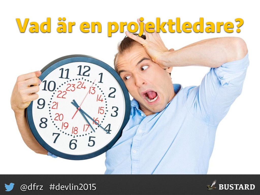 BUSTARD @dfrz #devlin2015 Vad är en projektleda...
