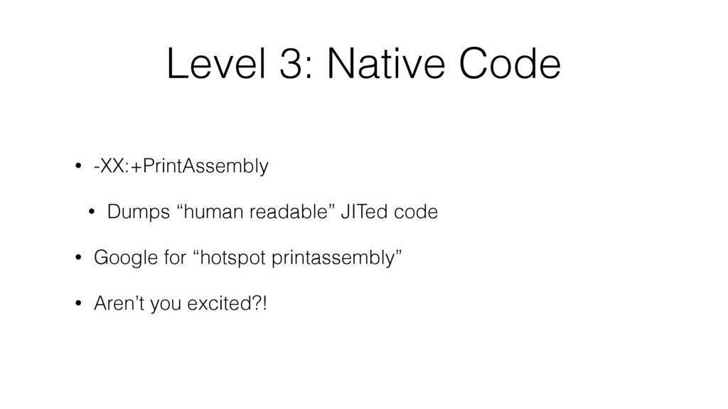 Level 3: Native Code • -XX:+PrintAssembly • Dum...