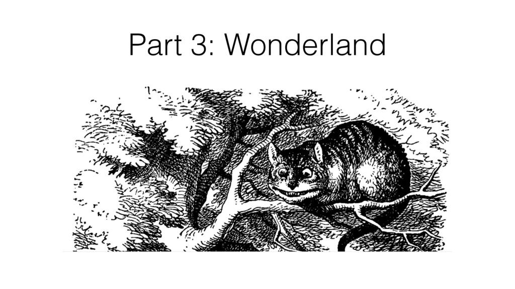 Part 3: Wonderland