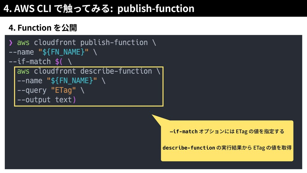 4. AWS CLI : publish-function 4. Function —if-m...