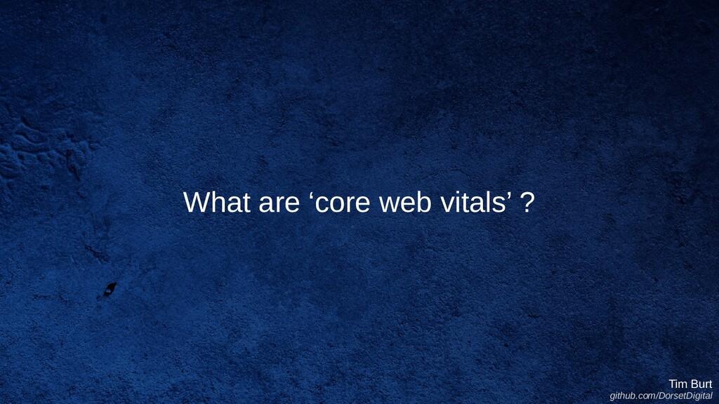 What are 'core web vitals' ? Tim Burt github.co...