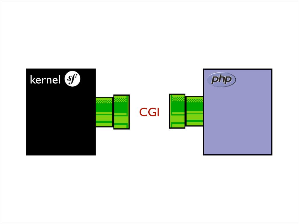 kernel CGI