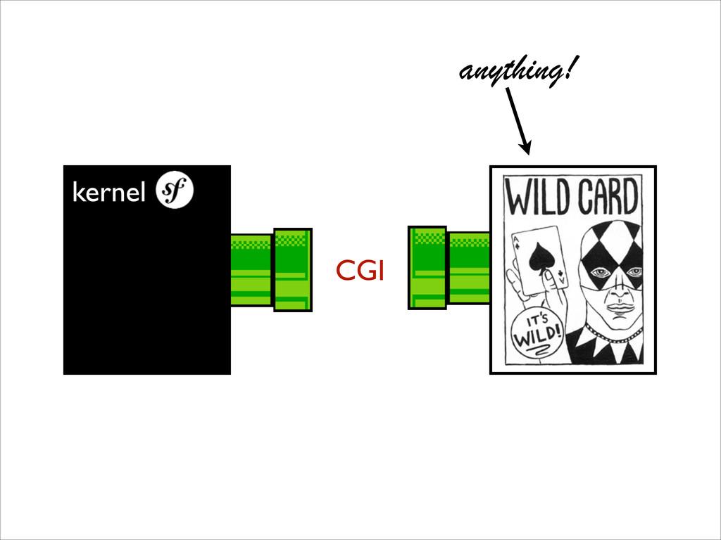kernel CGI anything!