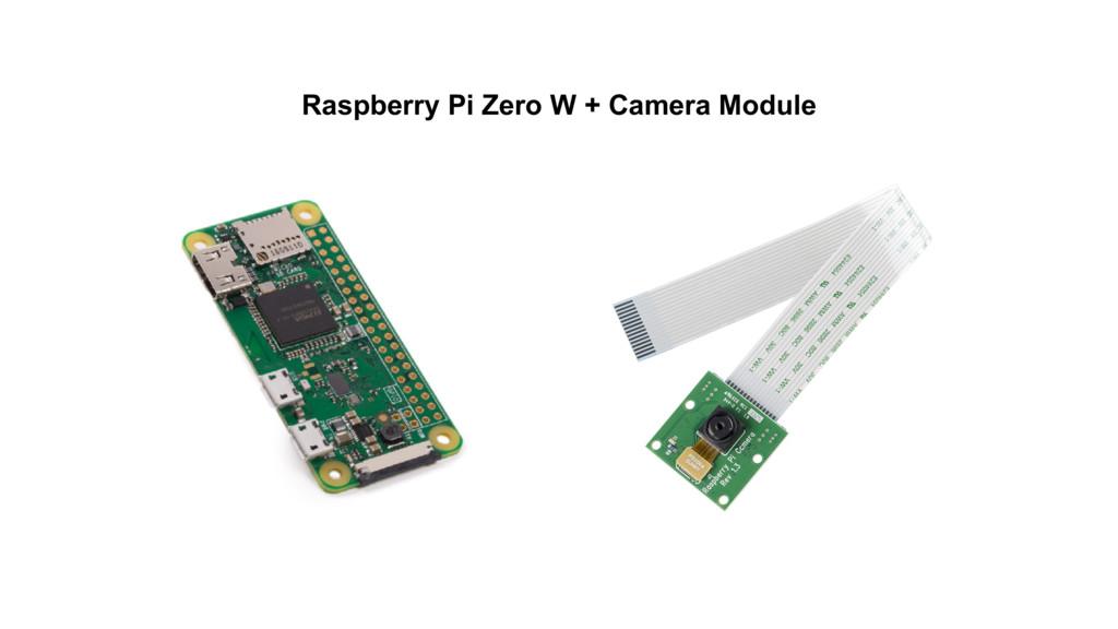 Raspberry Pi Zero W + Camera Module