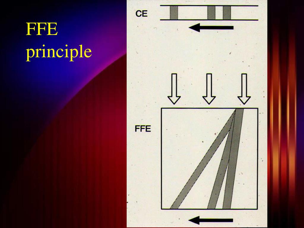 FFE principle
