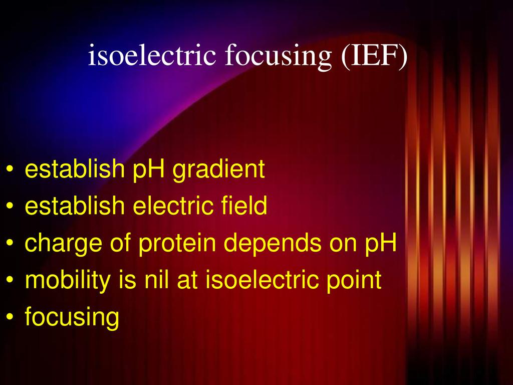 isoelectric focusing (IEF) • establish pH gradi...