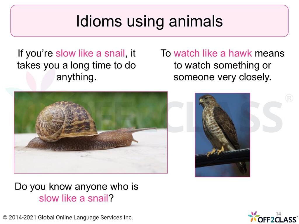 If you're slow like a snail, it takes you a lon...