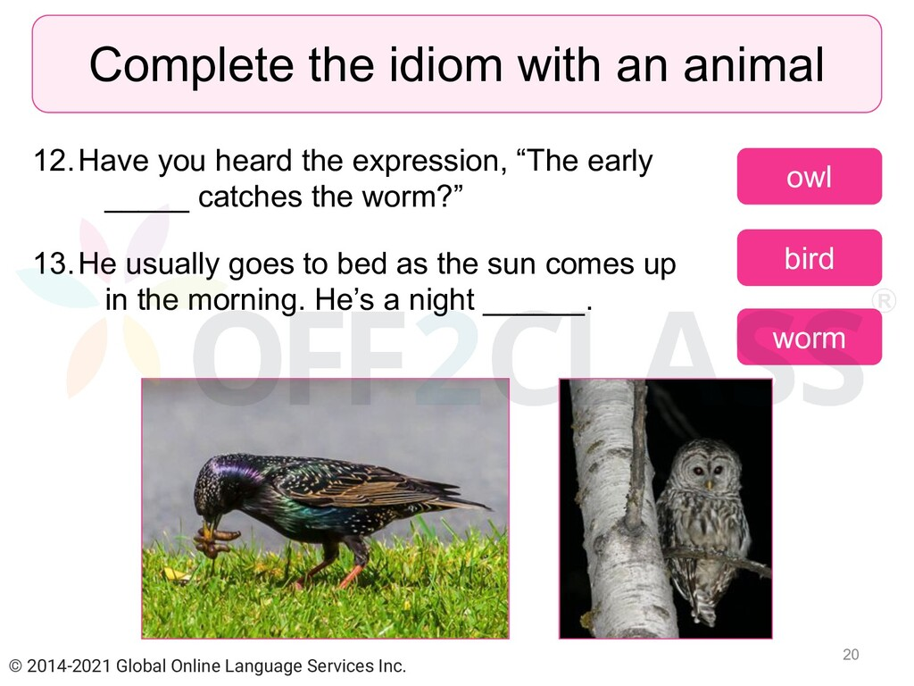 """12.Have you heard the expression, """"The early __..."""