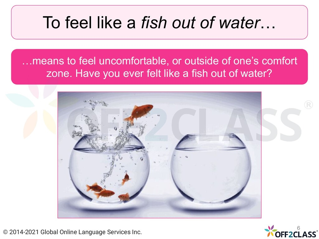 To feel like a fish out of water… …means to fee...