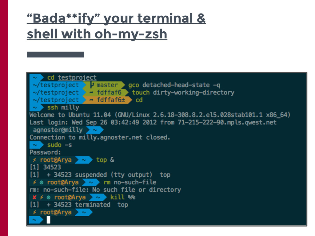"""""""Bada**ify"""" your terminal & shell with oh-my-zsh"""