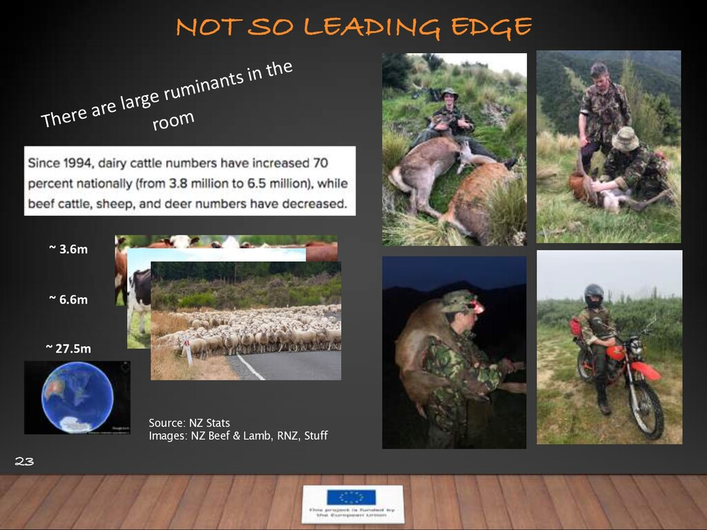 NOT SO LEADING EDGE 23 There are large ruminant...