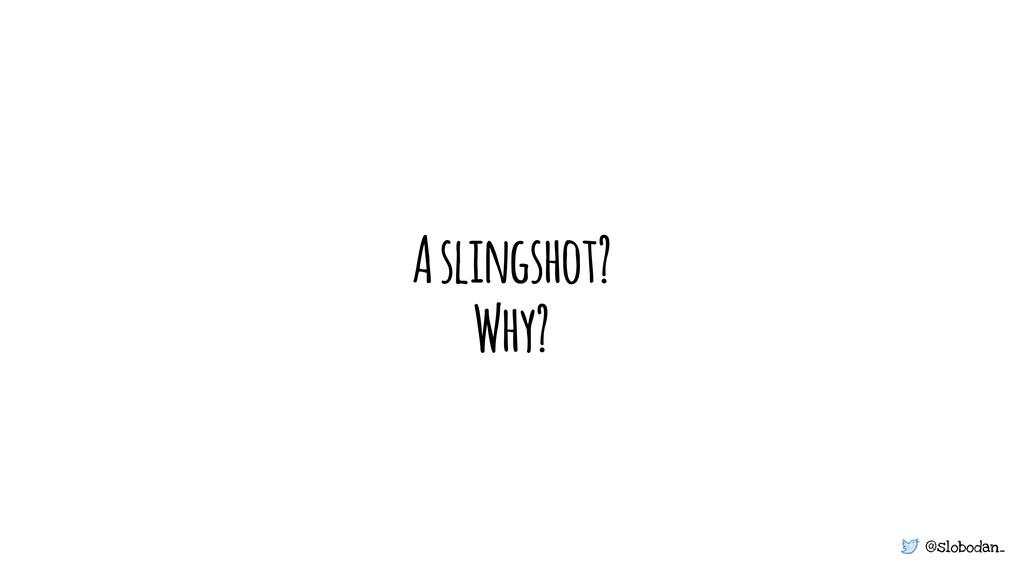@slobodan_ A slingshot? Why?