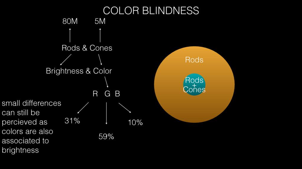Rods & Cones Brightness & Color 80M 5M Rods Rod...