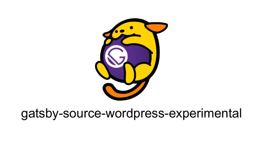 gatsby-source-wordpress-experimental