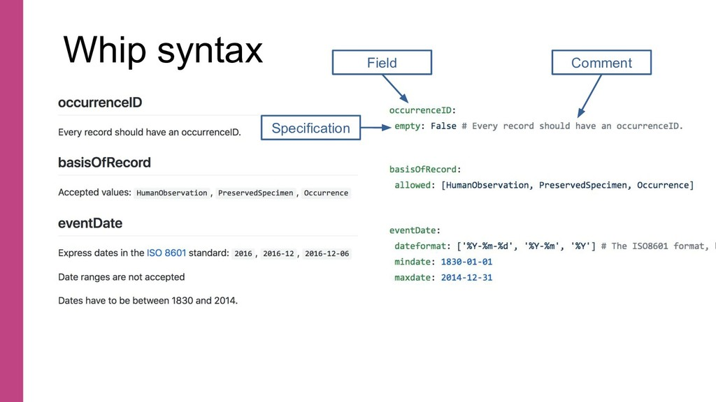 Whip syntax Comment Field Specification