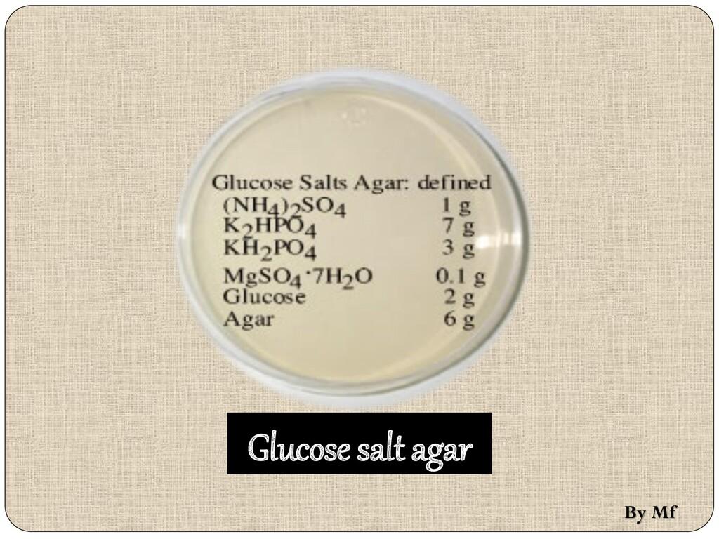 Glucose salt agar By Mf