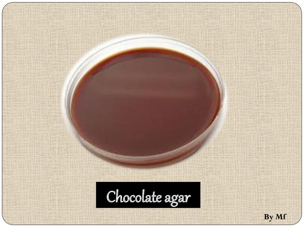 Chocolate agar By Mf