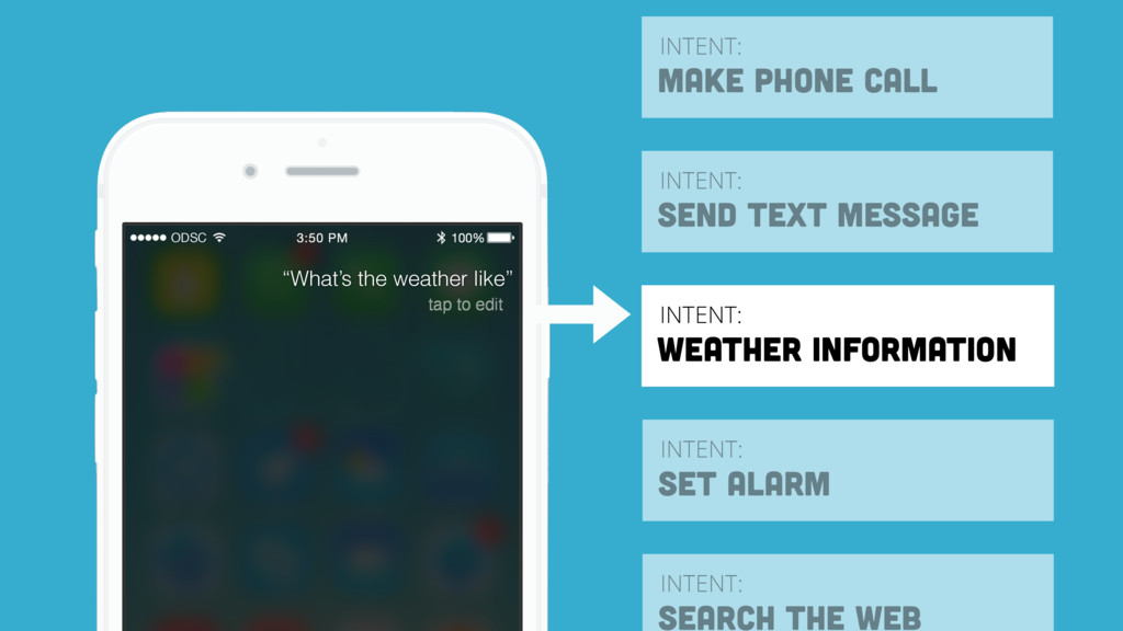 INTENT: WEATHER INFORMATION INTENT: MAKE PHONE ...