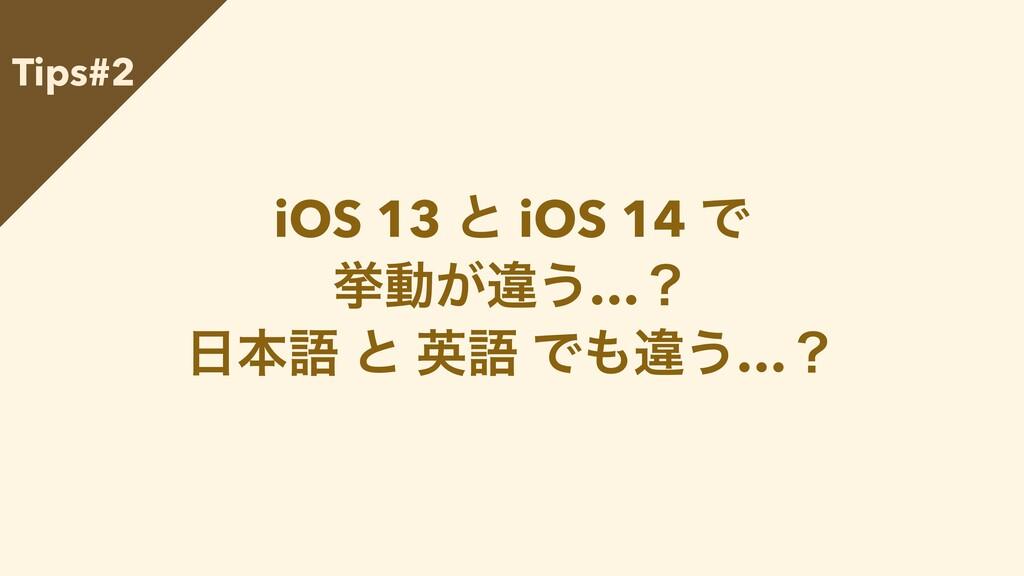 iOS 13 ͱ iOS 14 Ͱ   ڍಈ͕ҧ͏…ʁ   ຊޠ ͱ ӳޠ Ͱҧ͏…ʁ T...